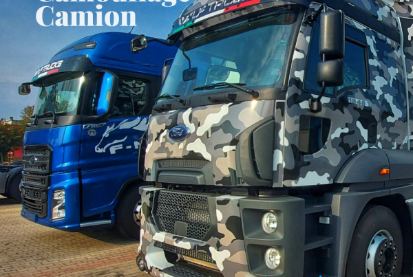 Rivestimento Camouflage Camion Ford Truck WLF